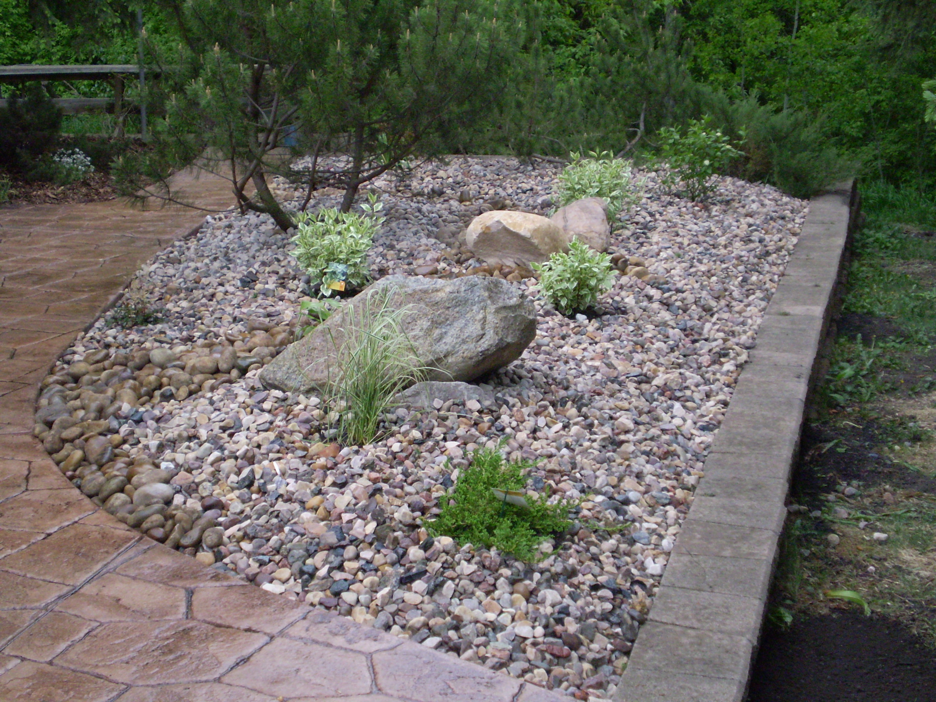 Low maintenance landscaping xeriscaping whitemud for Best low maintenance landscaping