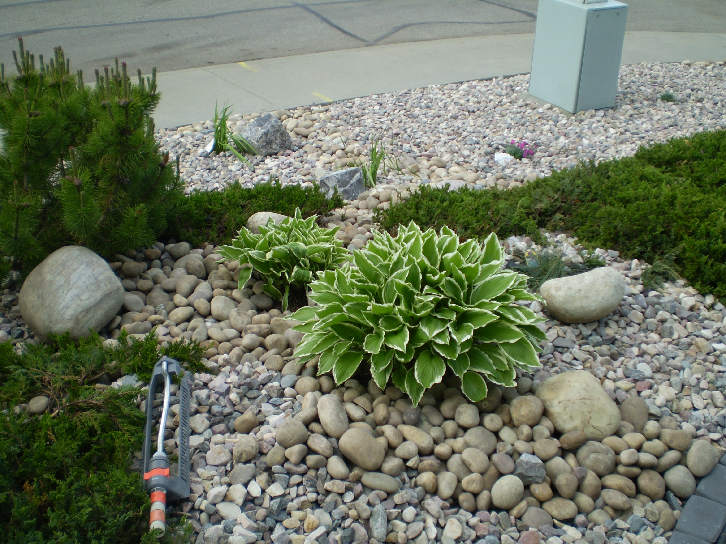 Low maintenance landscaping xeriscaping whitemud for Low maintenance garden design pictures