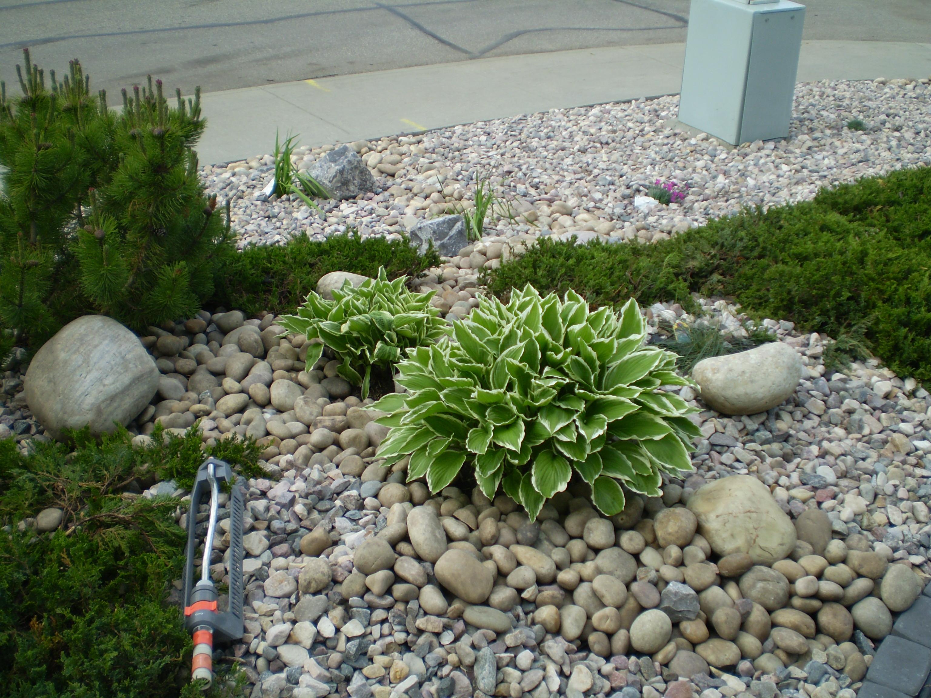 Design Plan: Landscape design basics principles