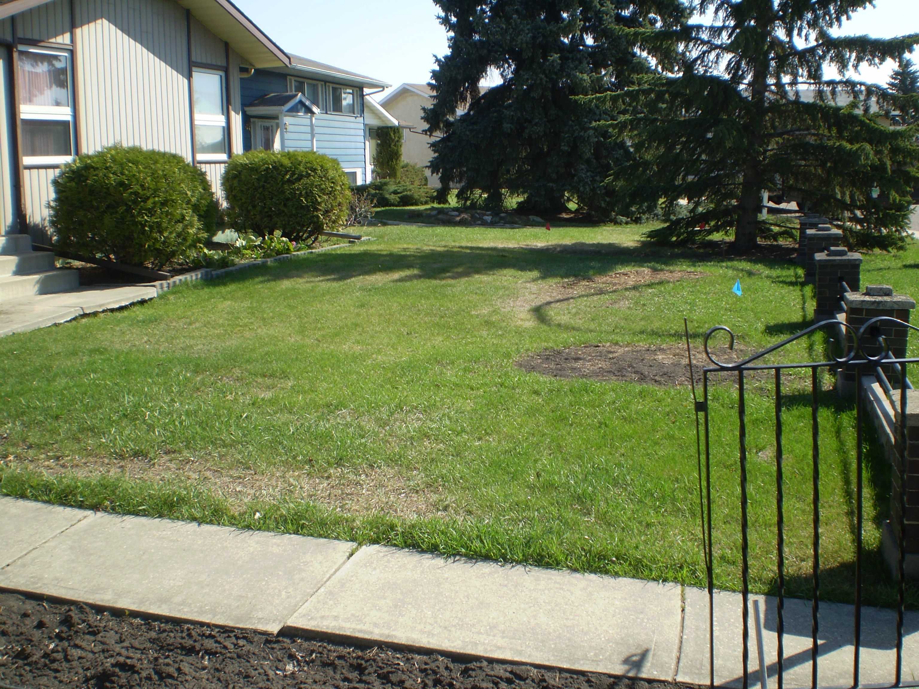 Small Front Yard Landscaping Before And After : Small front yard before midpoint after whitemud